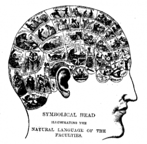 Diagrama em: Samuel R. Wells. How To Read Character: A New Illustrated Handbook Of Phrenology And Physiognomy, For Students And Examiners; With A Descriptive Chart. Fowles & Wells: New York, 1873. hpp://commons.wikimedia.org/wiki/File:Phrenologychart.png; Domínio Público.